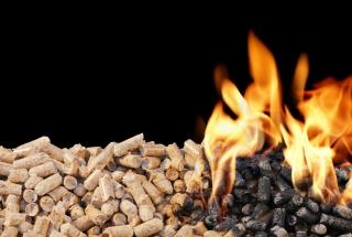 biomass_quelle_vdi_wissensforum