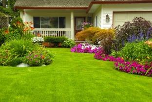 Vďaka starostlivosti môže trávnik vyzerať dokonalo